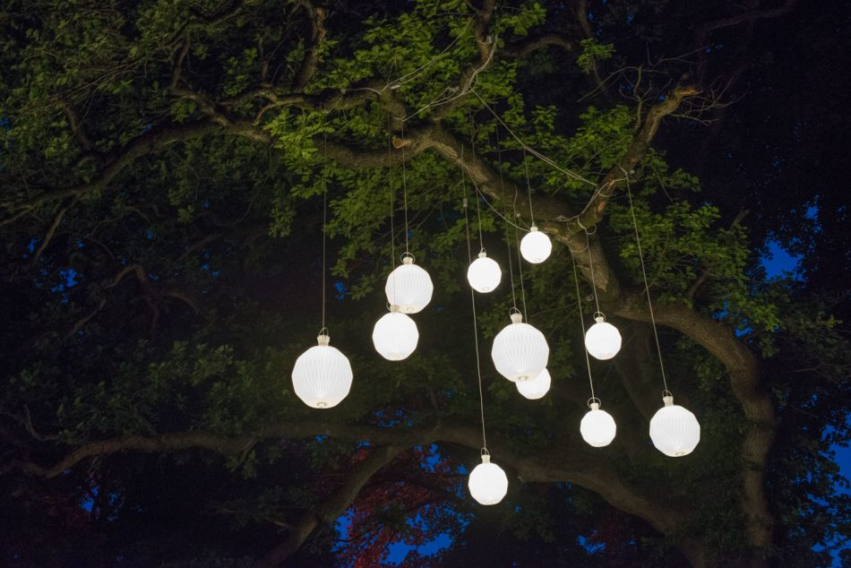 Danish designer lamps hanging from a tree